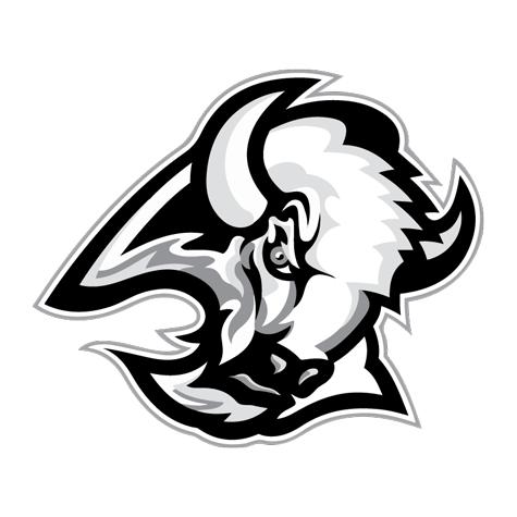 mascot of an AllStar Fundraiser partner